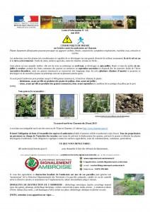 COMMUNIQUE_2020-DDT16 Ambroisie